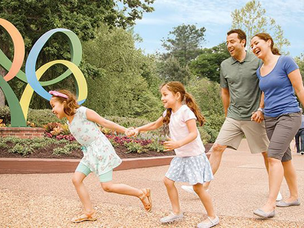 Busch Gardens set to reopen in early August with special event
