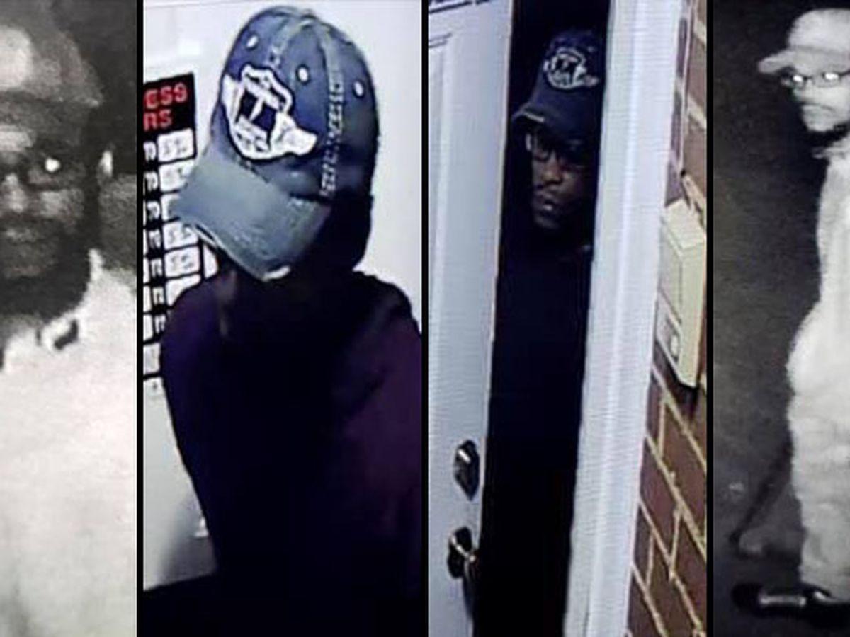 Petersburg police looking for suspect in business burglary