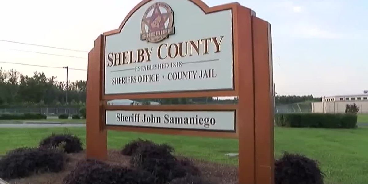 Child's hand bitten off in dog attack in Shelby County
