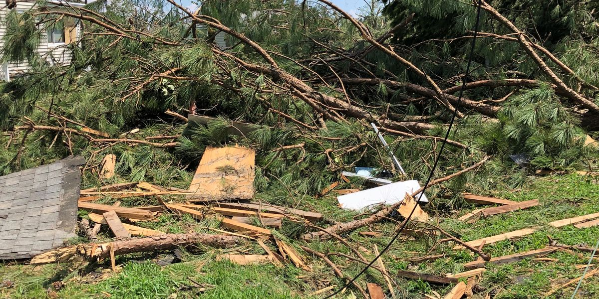 Hopewell offers free storm debris removal for residents