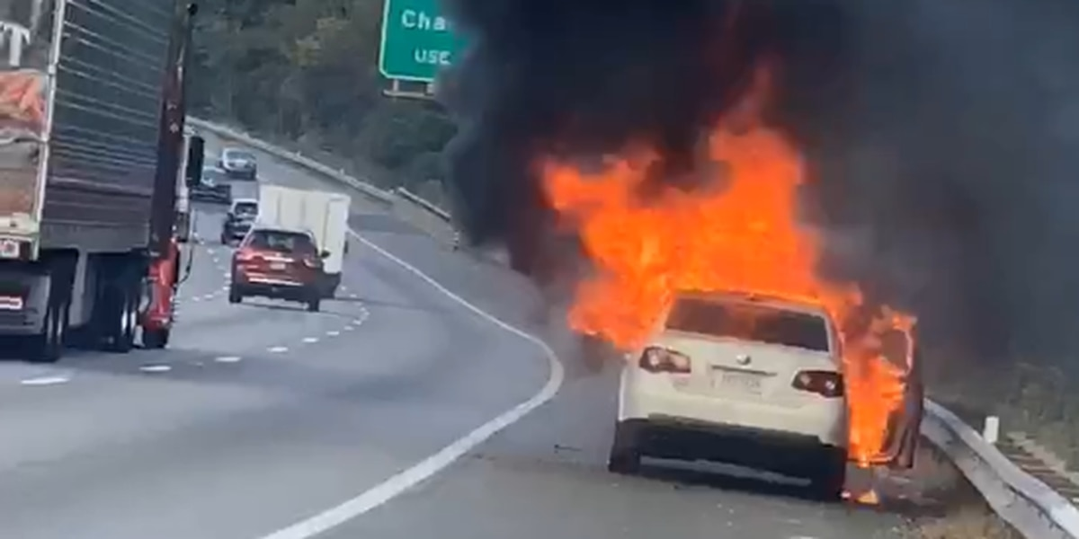 Man escapes I-95 car fire unharmed: 'We literally just watched the car burn up'