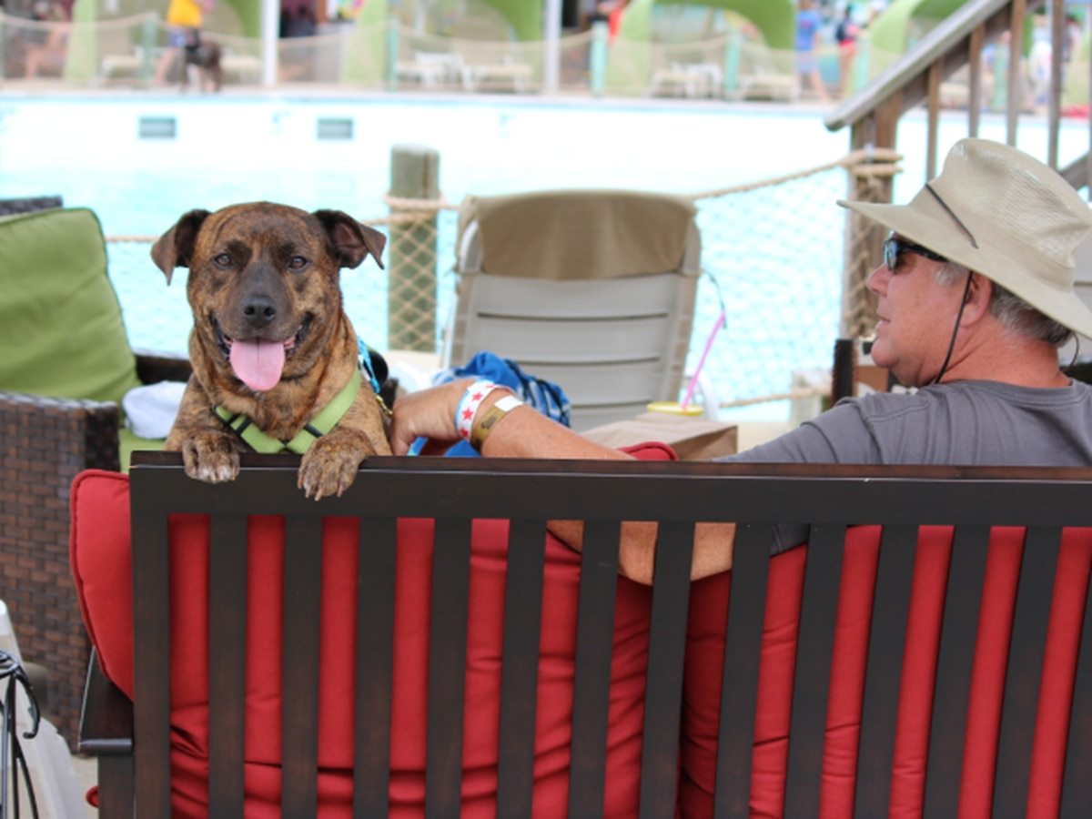 Dogs welcome this weekend at waterpark in Virginia Beach