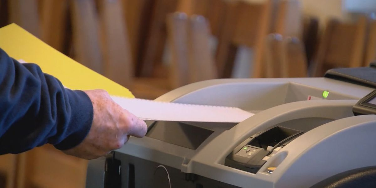 Virginia delays statewide certification of election results