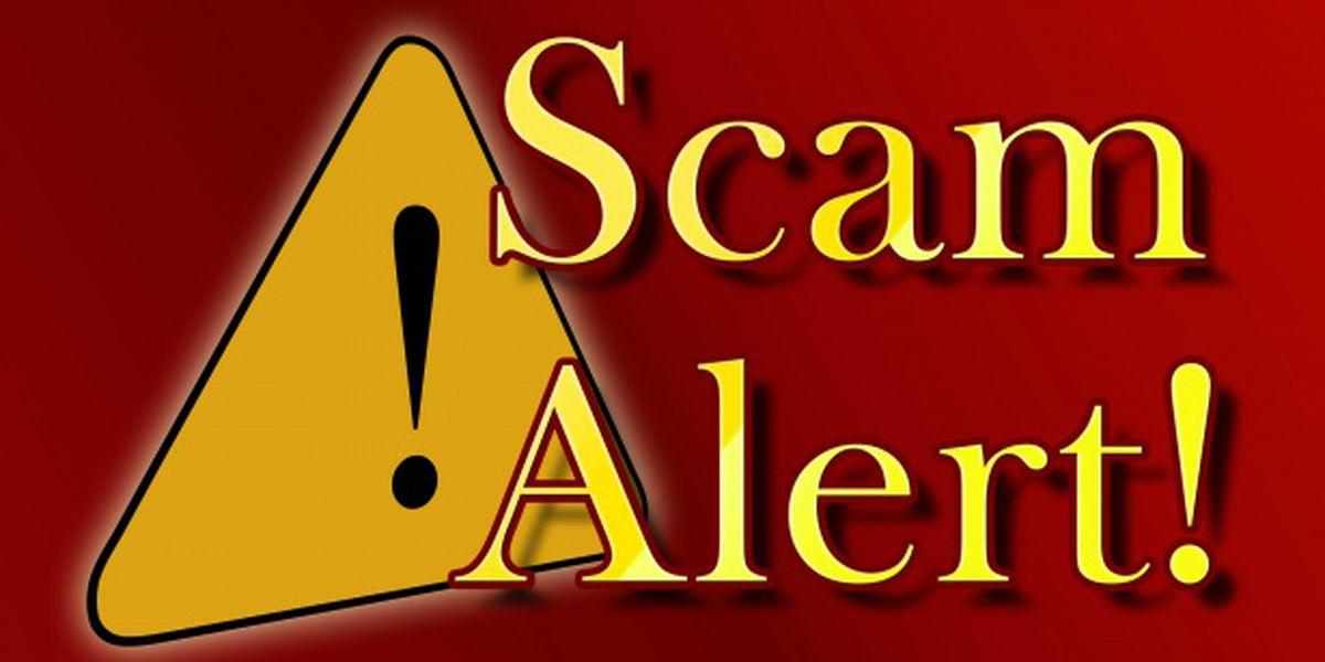 Crime ring caught selling fake cars on eBay, Craigslist