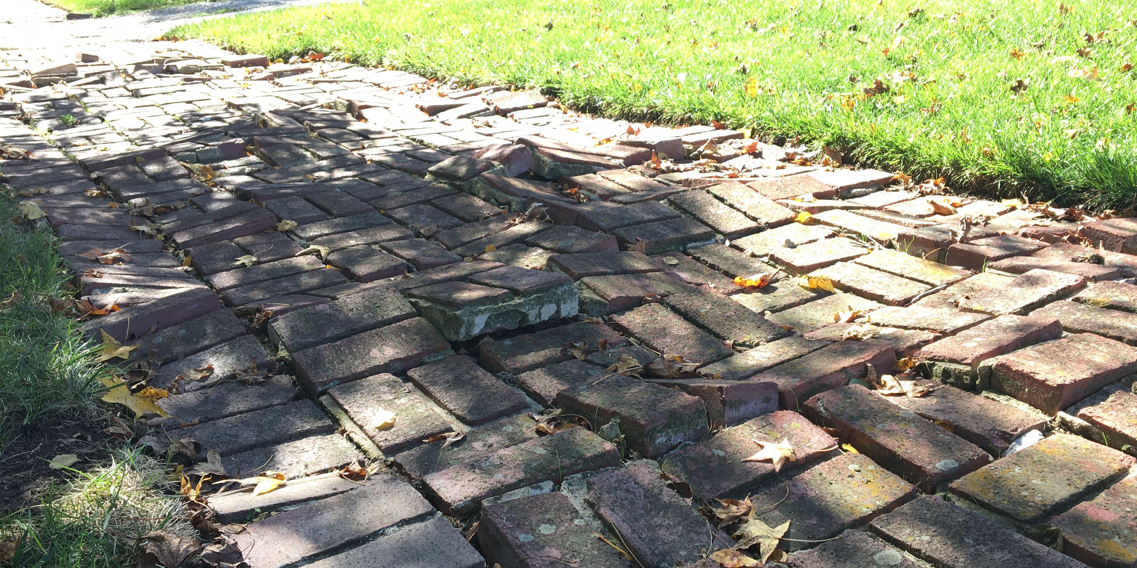Buckling brick sidewalks raise concerns in historic neighborhood