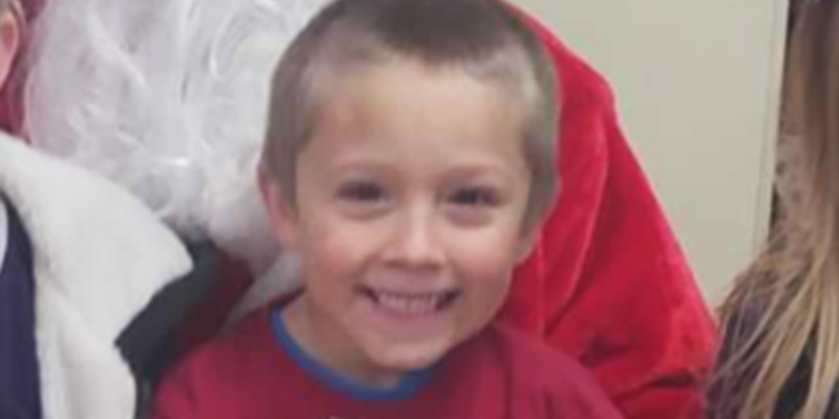 6 Year Old Boy Dies After Tree Falls On Home