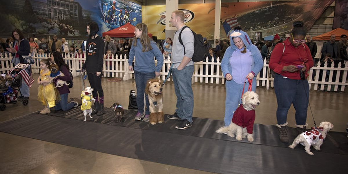 Pet Expo to benefit Henrico Humane Society