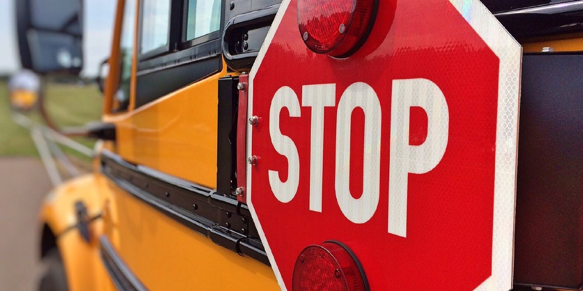Electric school buses coming to Virginia