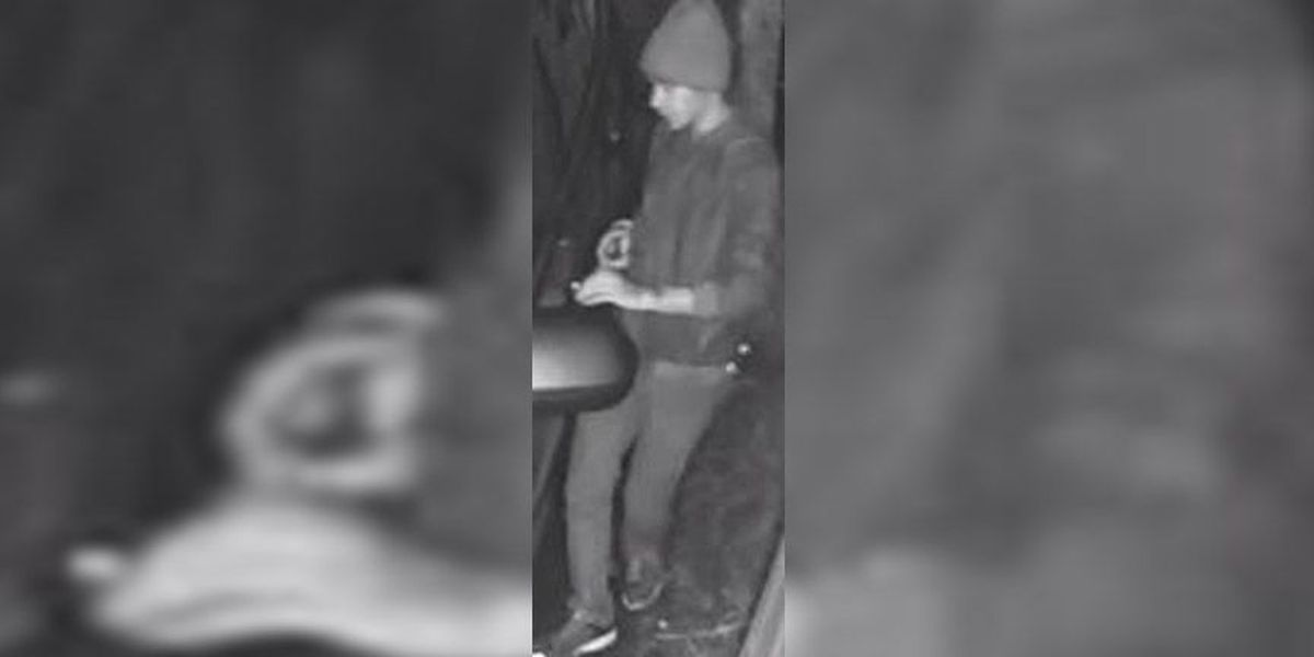 Police search for person on video attempting to steal items from cars