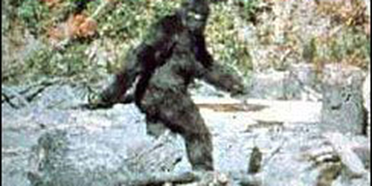 Avery County officials asking for public's assistance in finding 'Bigfoot'