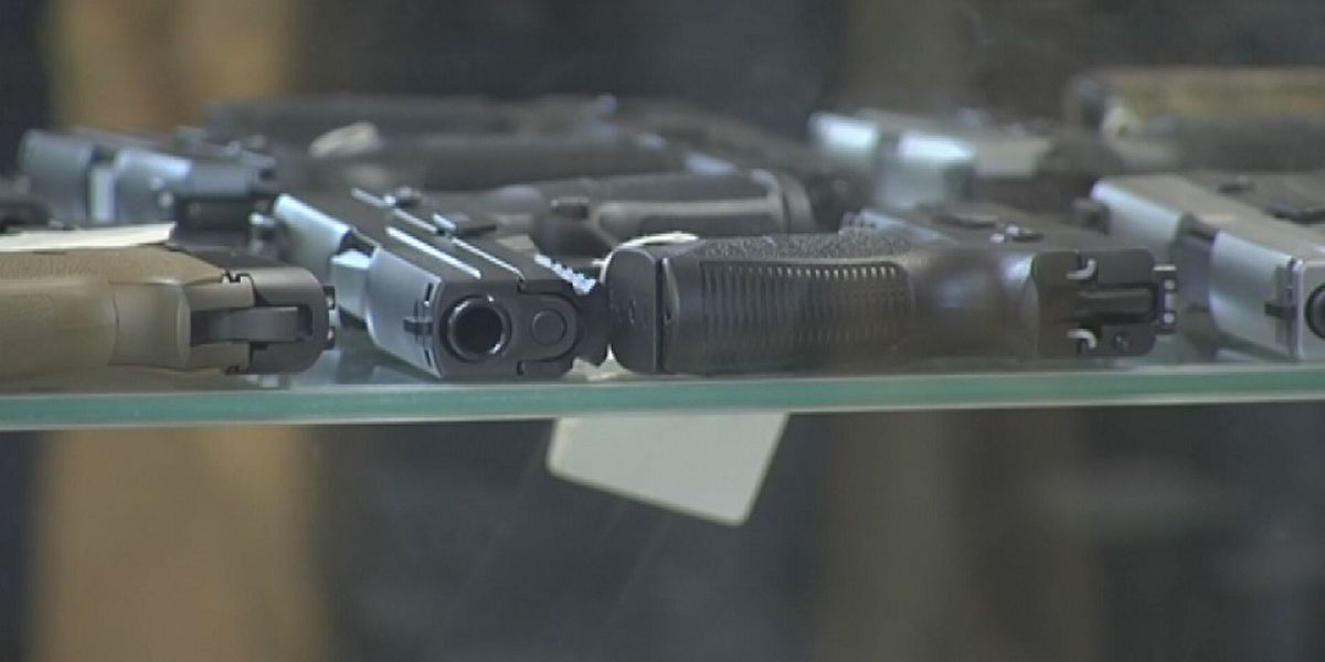 New bill banning firearms near polling places passes the Virginia House