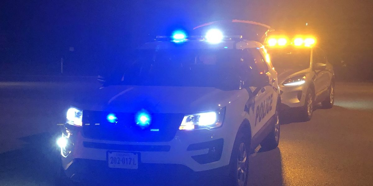 Man identified after being fatally struck by vehicle
