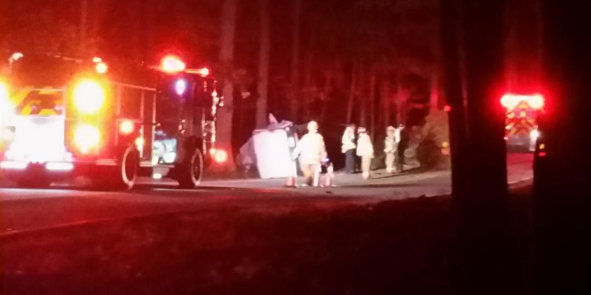 Driver crashes into tree in Chesterfield, dies at the scene