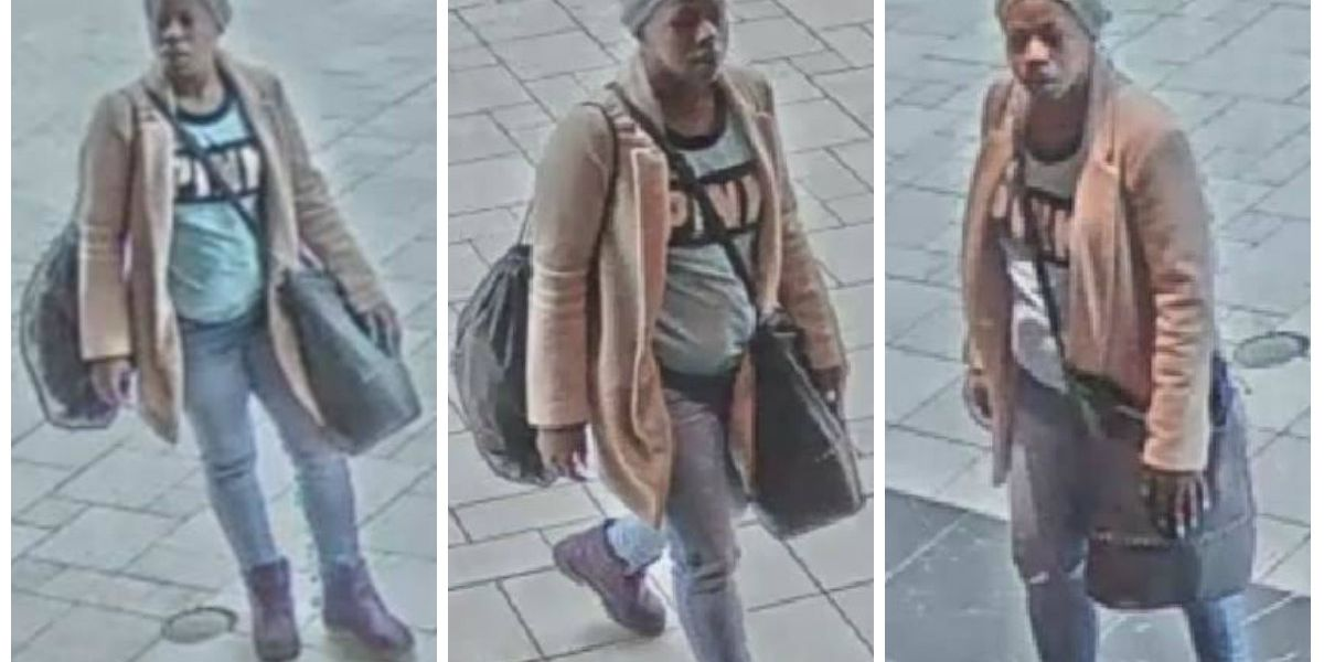 Police search for woman who stole $1,000 worth of underwear