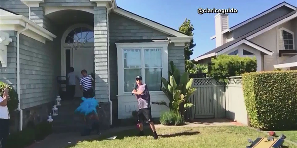 Couple's gender reveal fail goes viral