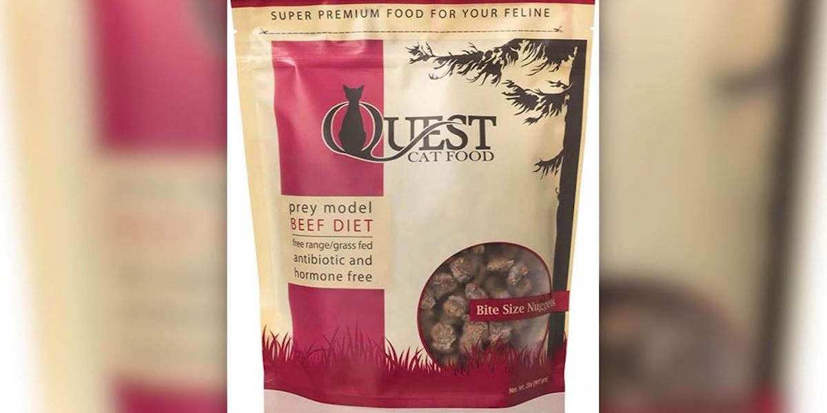 Cat food recalled over salmonella risk