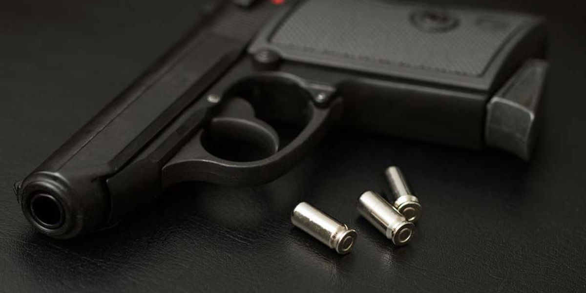 Virginians split on arming teachers