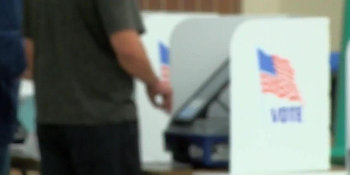 Arizona officials dispute 'ballot invalidation' due to Sharpie concerns