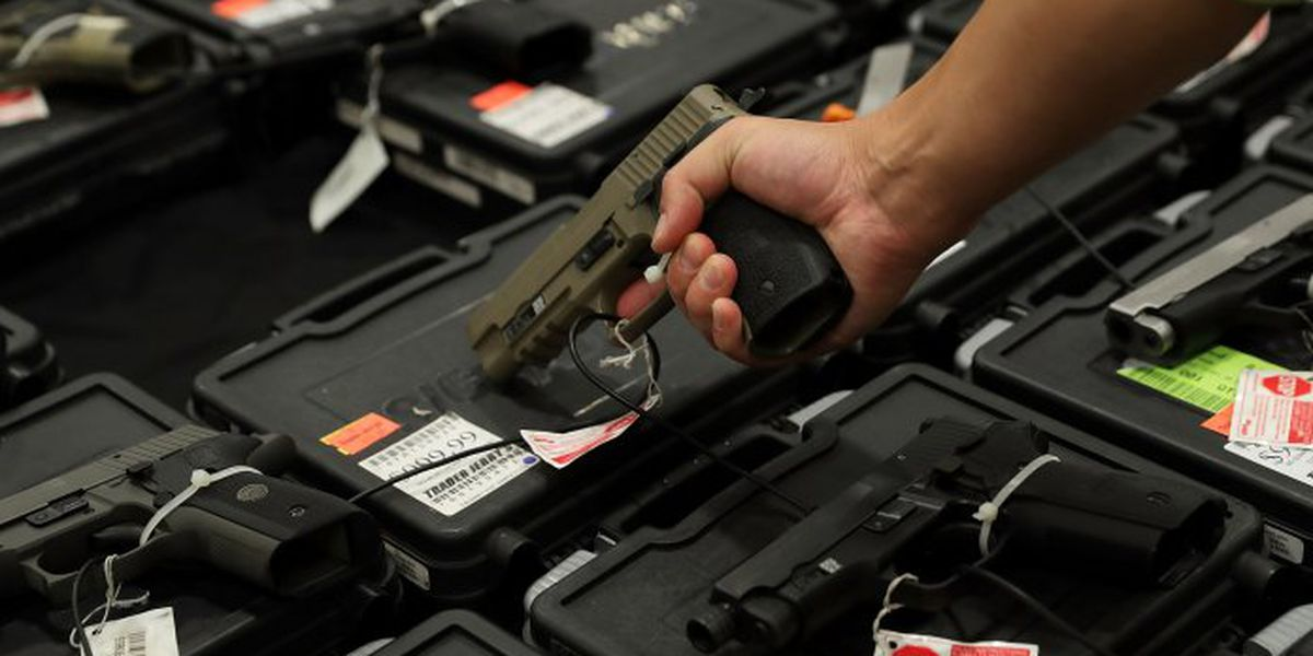 Virginia General Assembly passes bills to require background checks on all gun sales, restore one-handgun-a-month law