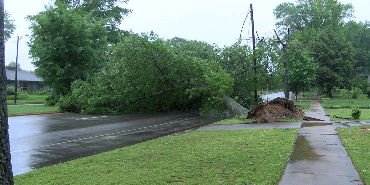 Flash flooding washes out Richmond roadways, downs trees