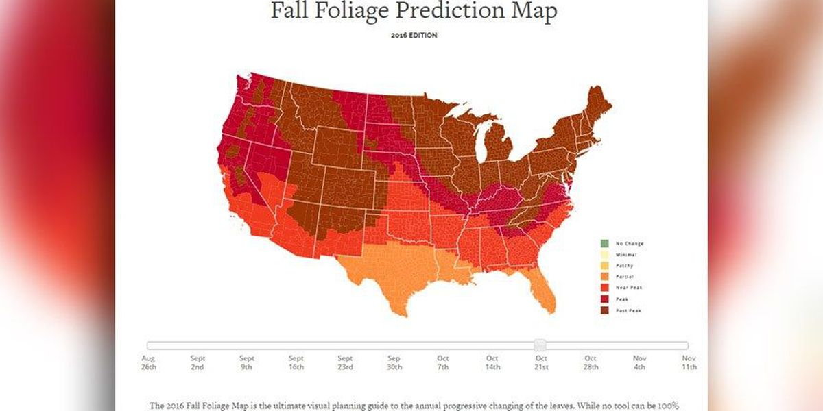 This interactive map shows when you can expect to see fall foliage