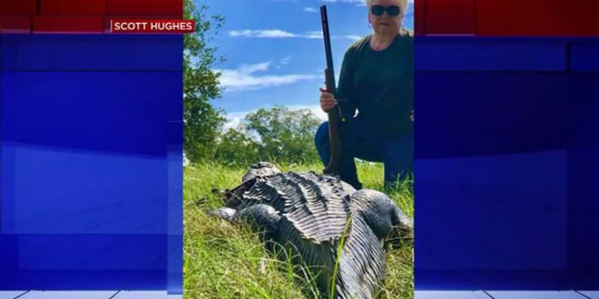 'Don't mess with Nana': TX grandma kills 12-foot alligator with one shot