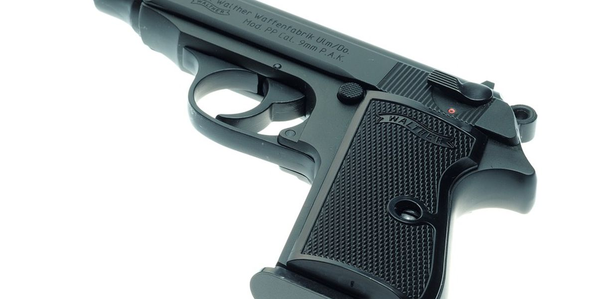 Bill to fine owners for unreported stolen guns fails
