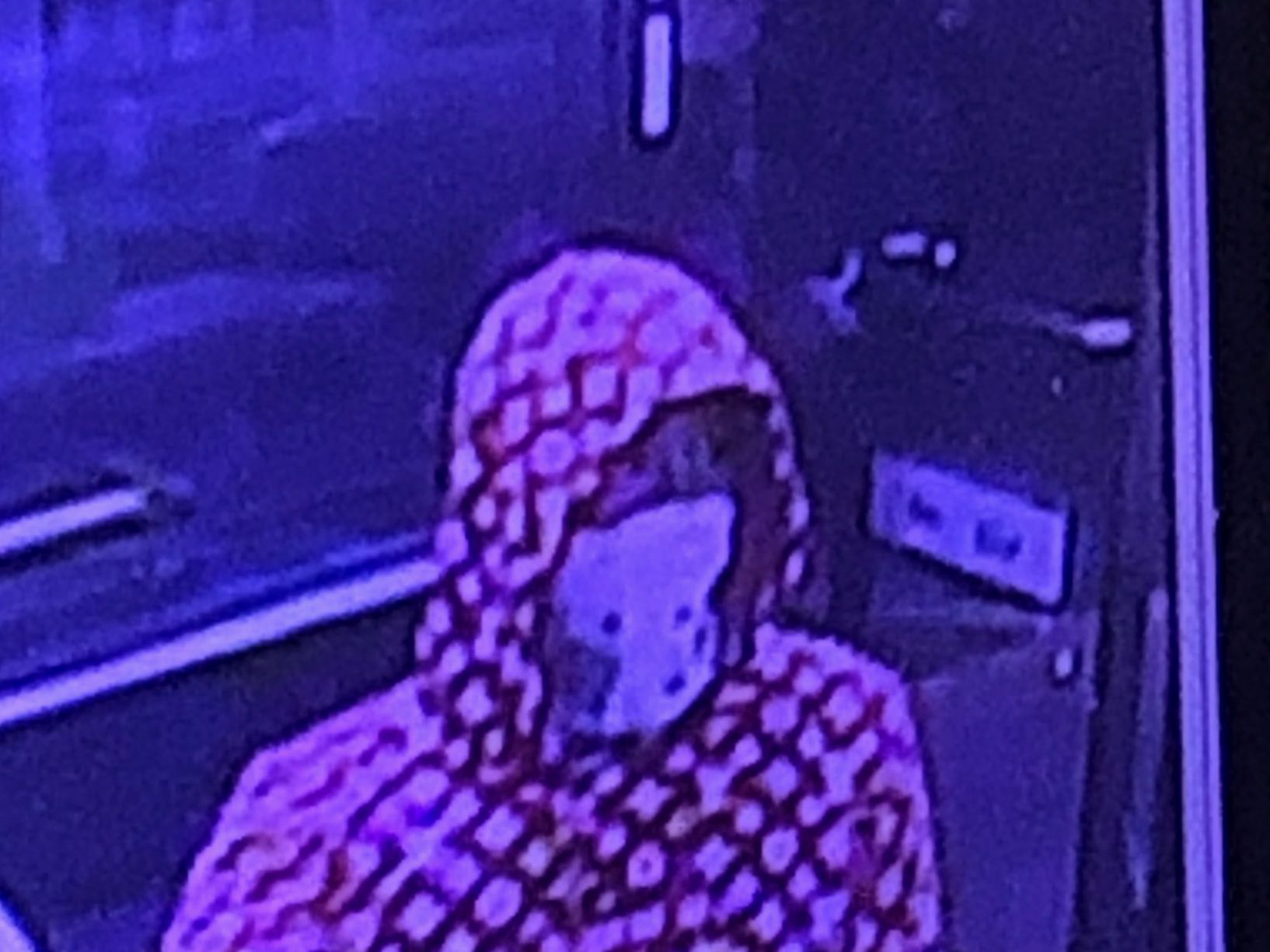 Police: 3 young men wearing bandannas rob Chesterfield 7-Eleven