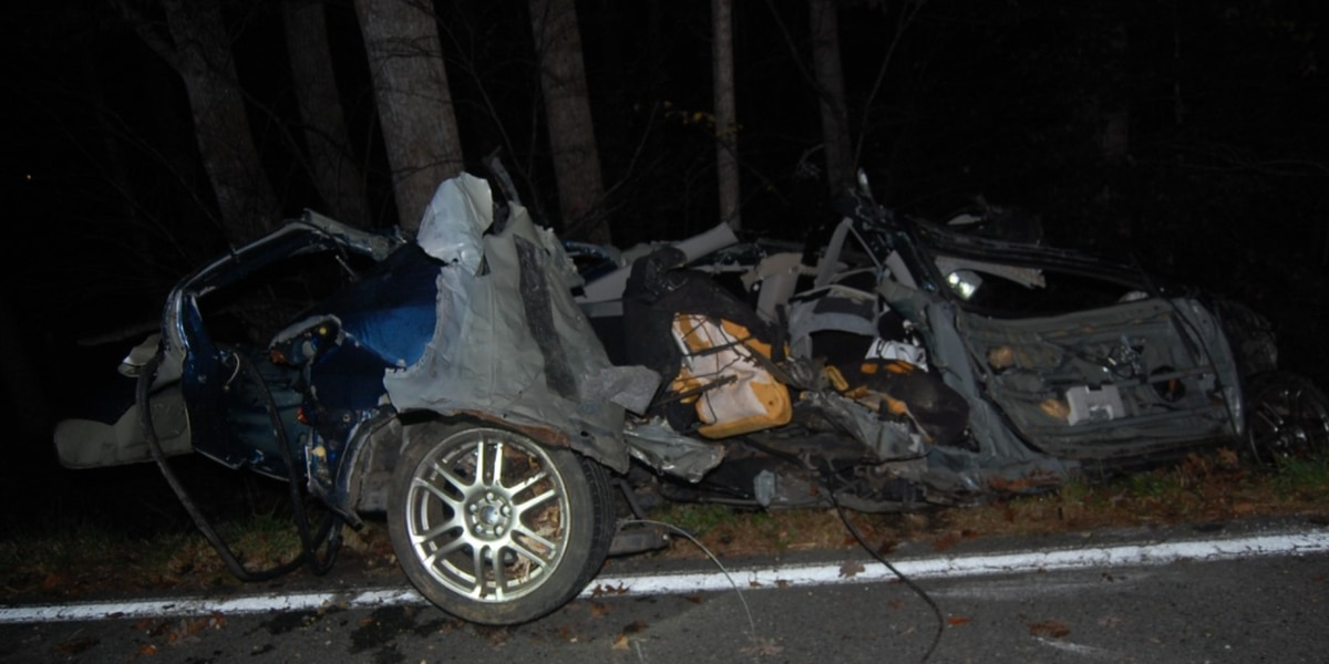 Woman killed in single-vehicle crash in Louisa Co., authorities say