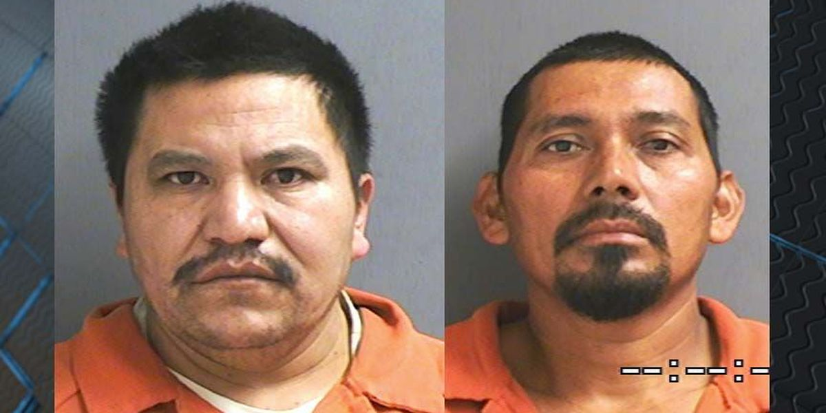2 plead guilty to cockfighting, 300 birds seized in Powhatan