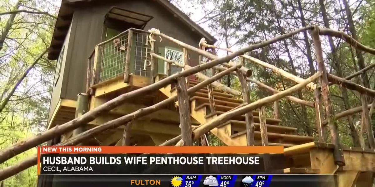 Man builds wife treehouse