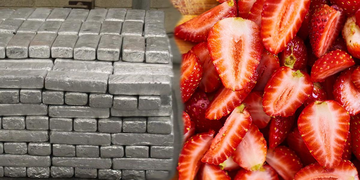 $12 million worth of meth seized in a shipment of frozen strawberries in TX